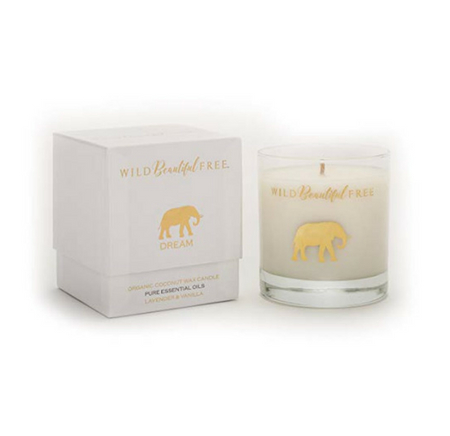 Dream Elephant Wild Beautiful Free candle