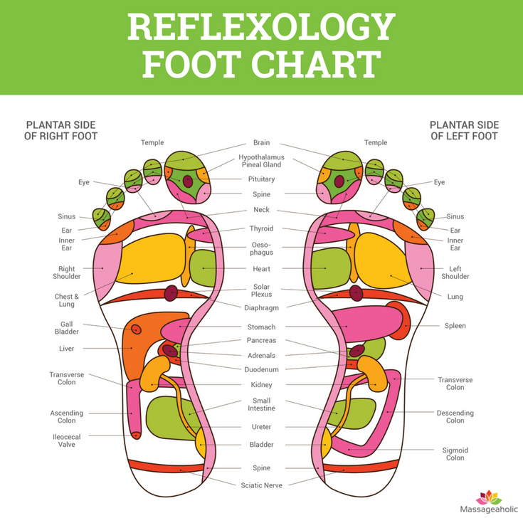 Foot reflexology chart, foot massage, foot pressure points diagram